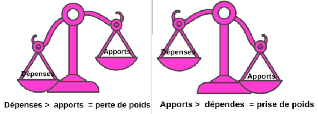 balance dépenses apports