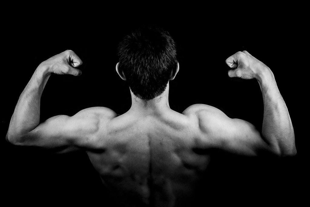 muscle-entraînement